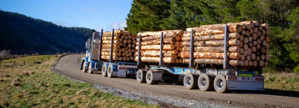 Logging Truck Crash in Montezuma